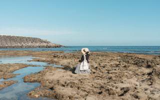 屏東恆春|小巴里島岩-墾丁半島上的世外桃源,清澈海水、數不完的海洋生物