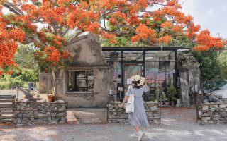 屏東恆春|樹夏飲事-老鳳凰木綻放之美,玻璃屋裡的咖啡香
